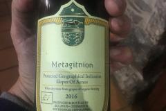 METAGITNION 2016